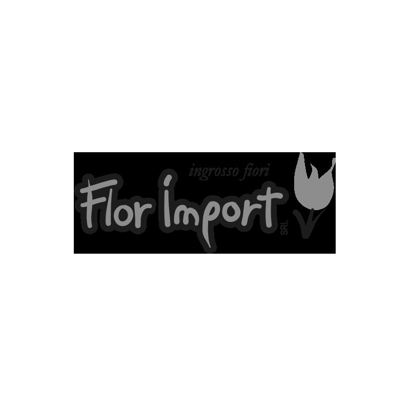 FlorImport